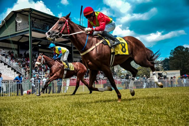 How to Enjoy Horse Racing Without Becoming Addicted
